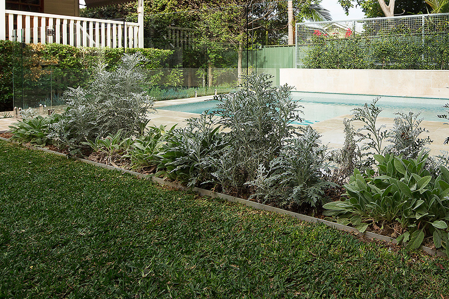Landscaping ideas september landscape brisbane for Landscape gardeners brisbane