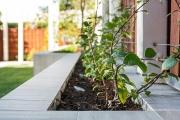 garden-ideas-03