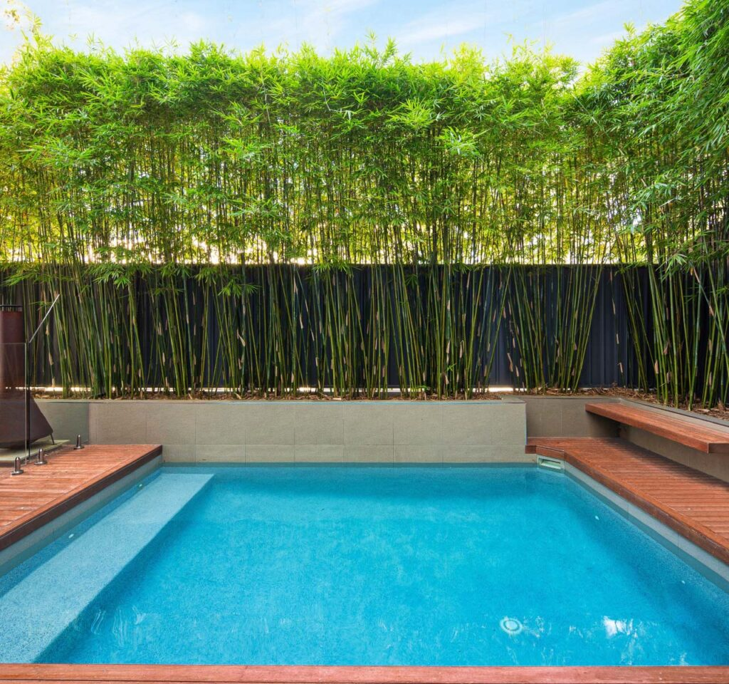 home pool surrounds